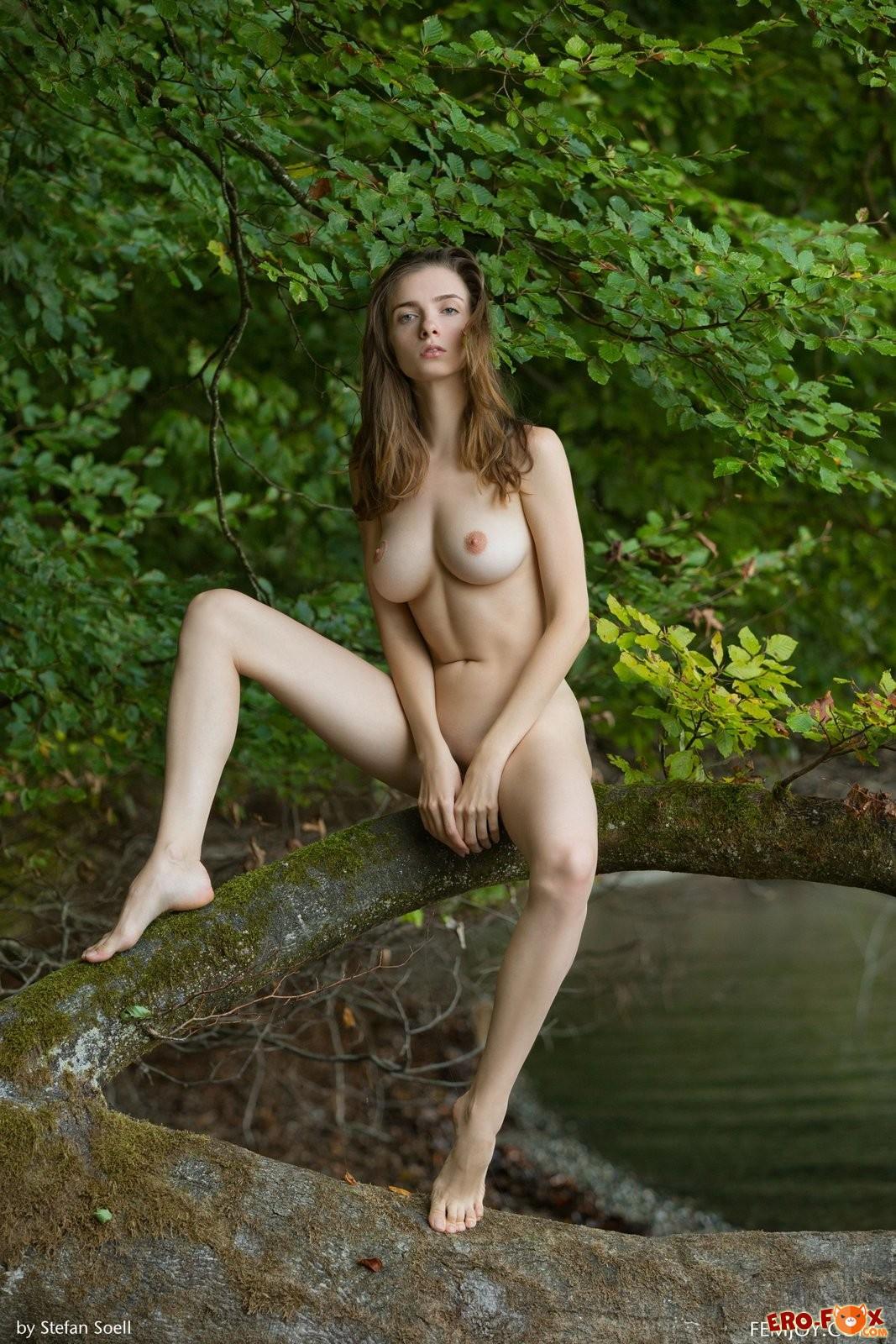 Голая красавица позирует в лесу - ню фото.